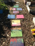 I love hopscotch in the garden (William Elementary, San Jose)