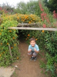 Kids cannot resist tunnels, especially living ones (Life Lab)