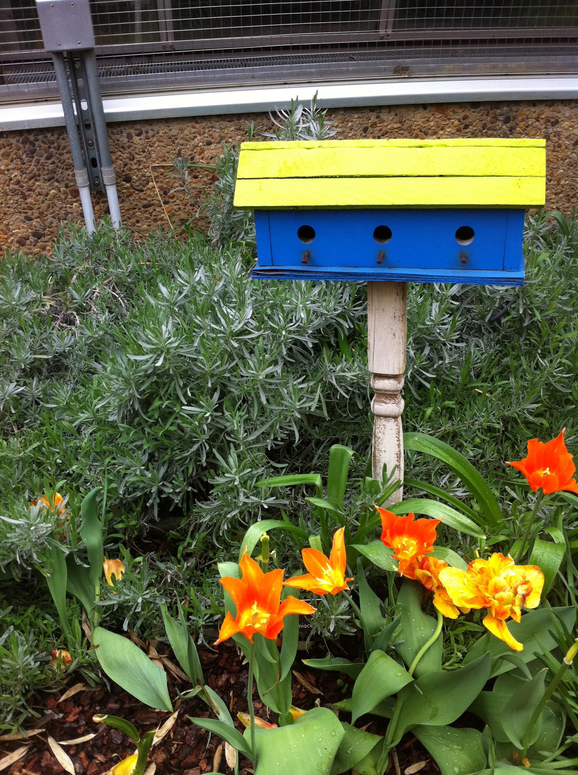 Children\'s Garden Ideas   What\'s not to like?